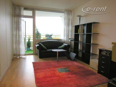 2 Zimmer Apartment mit Balkon