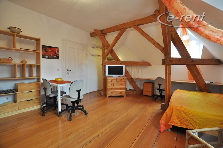 Bright single apartment in a quiet location