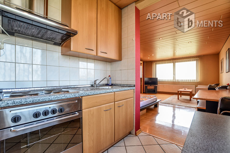 Modernly furnished spacious apartment in Cologne-Riehl