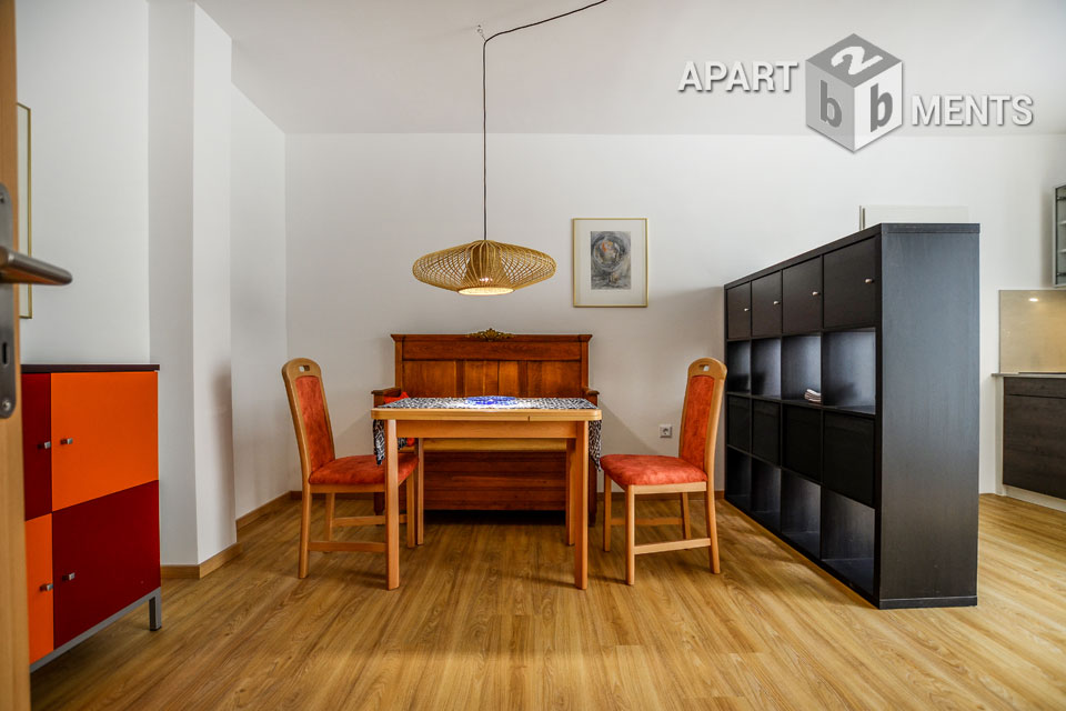 Modern furnished apartment with large roof terrace in Cologne-Altstadt-Nord
