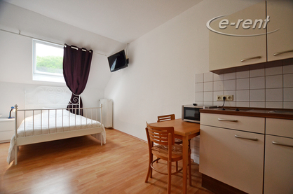 Modernly furnished old building apartment in Düsseldorf-Grafenberg
