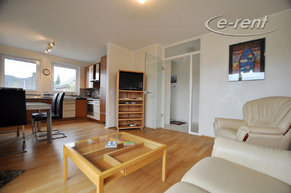 First class furnished and quiet apartment close to the Rhine in Leverkusen-Hitdorf