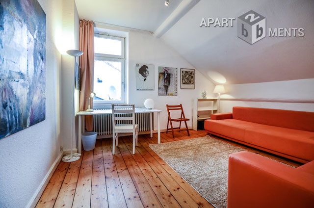 Furnished and spacious apartment with roof terrace in Bonn-Villenviertel