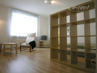 modern 1 room apartment in a central location