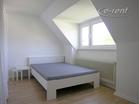 comfortable 3 room apartment near the river Rhine