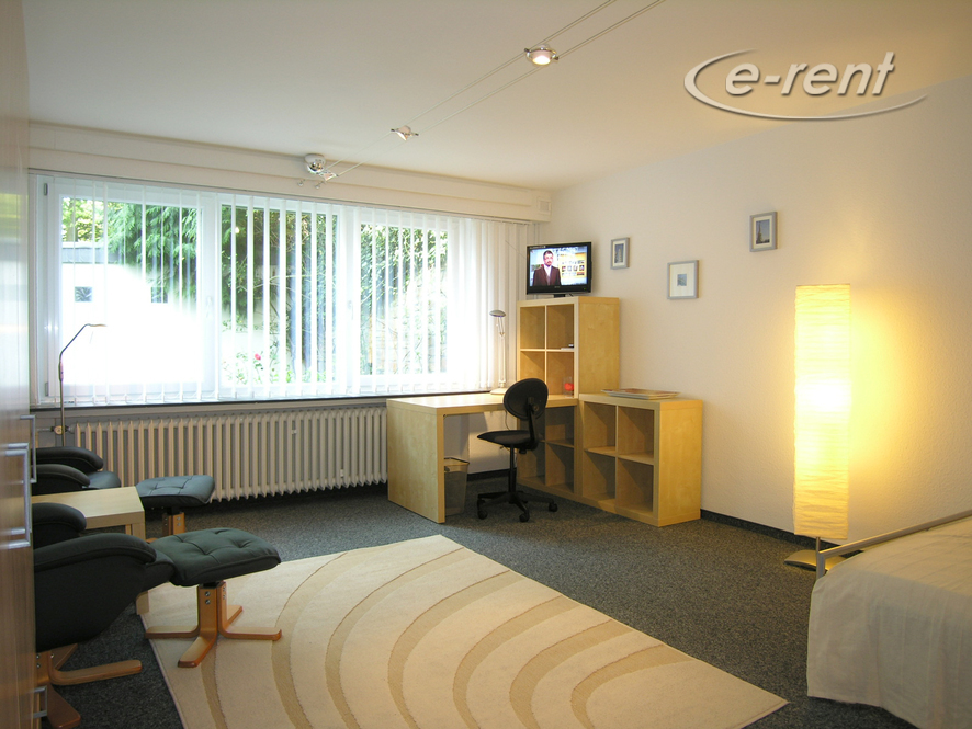 modern and spacious guest-room in a neat business apartment-sharing community