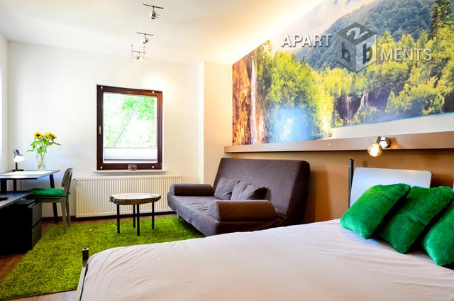 modern furnished apartment in Bonn-Plittersdorf