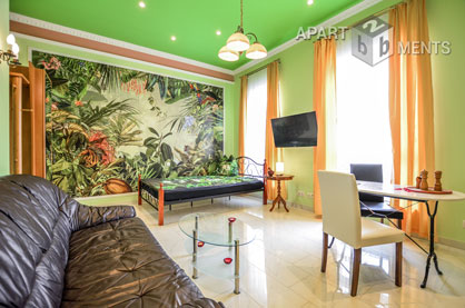 Furnished and bright apartment in Bonn-Endenich